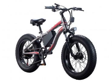 Электровелосипед 54 Fatbike GERPSI